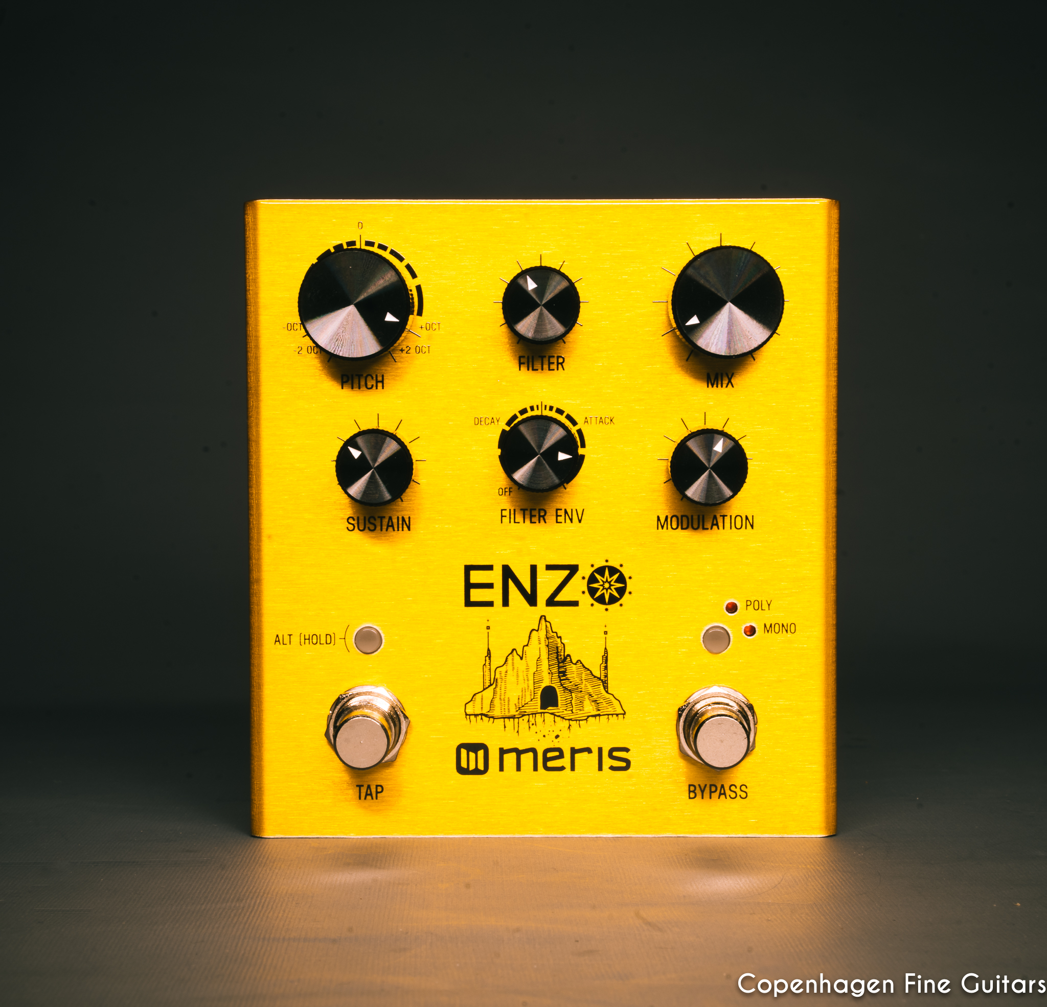 Meris Enzo Multi-Voice Synthesizer pedal for sale-2