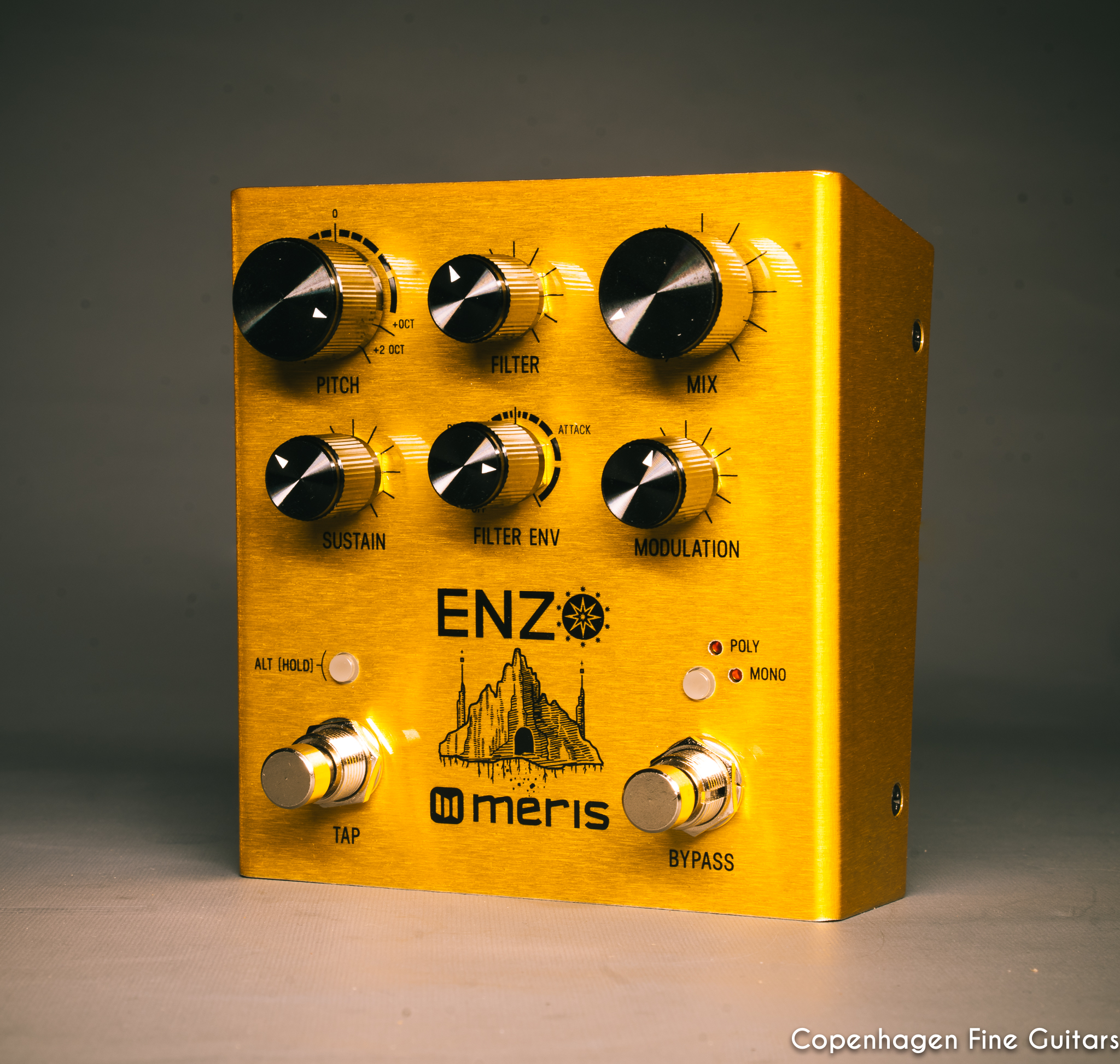 Meris Enzo Multi-Voice Synthesizer pedal for sale-3