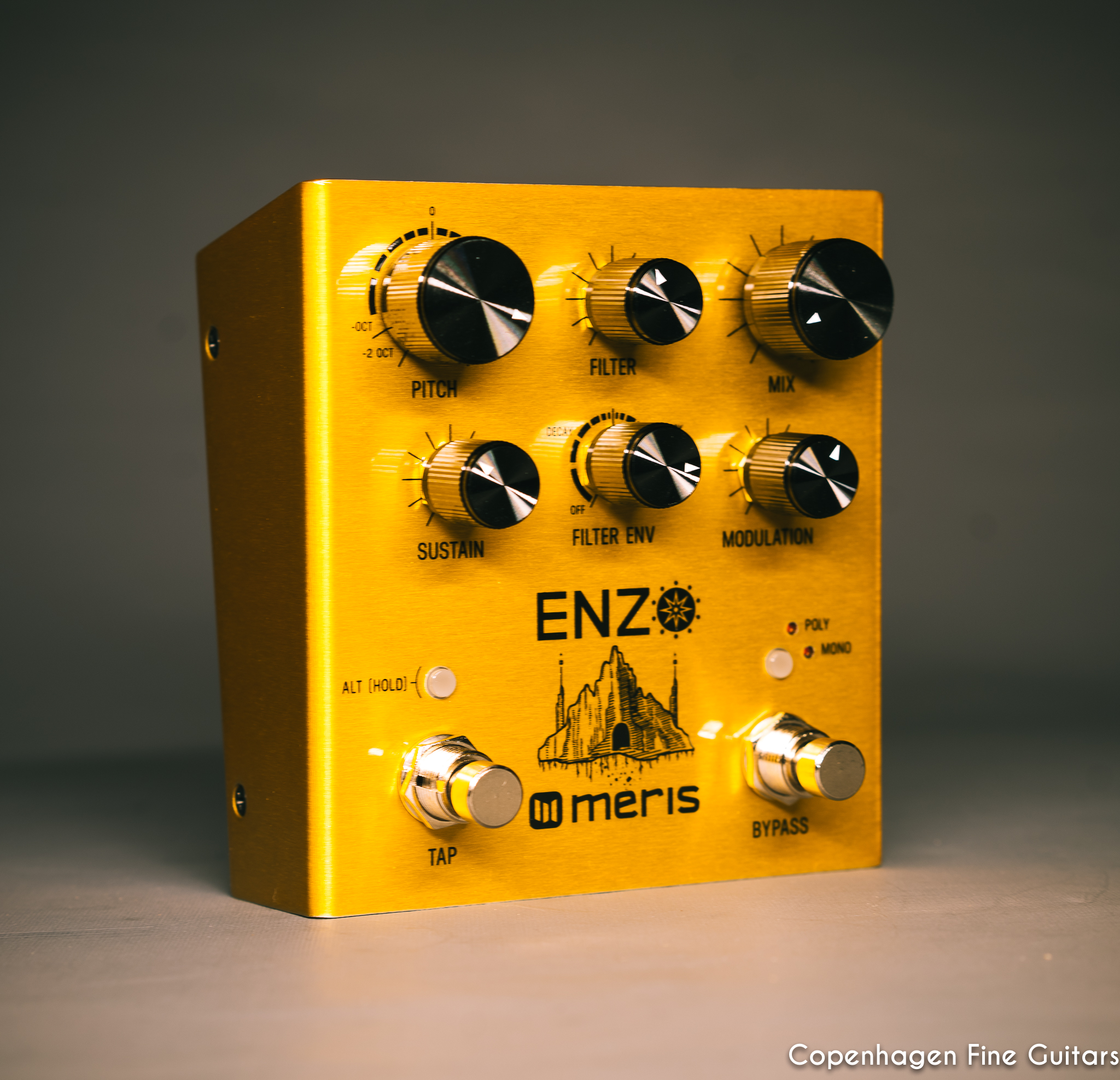 Meris Enzo Multi-Voice Synthesizer pedal for sale